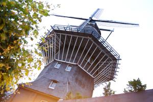 Amsterdam 2015-43